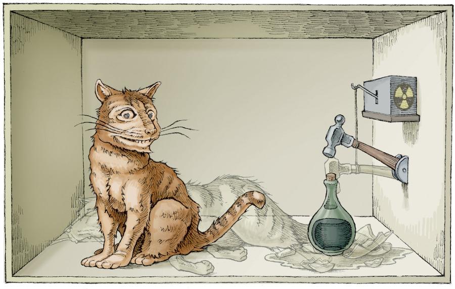 Schrodinger's Cat, Courtesy of Dean Tweed